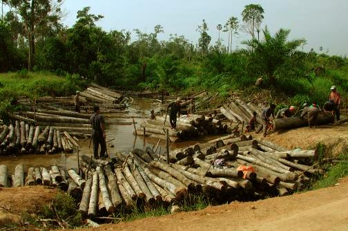 research paper in illegal logging 124 research partners  drivers of reduced illegal logging in brazil  estimated illegal wood imports by consumer and processing.