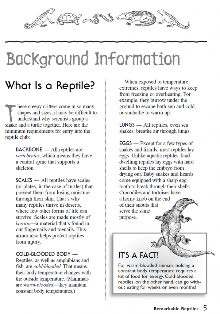 All About Reptiles Wildlife Research Amp Conservation