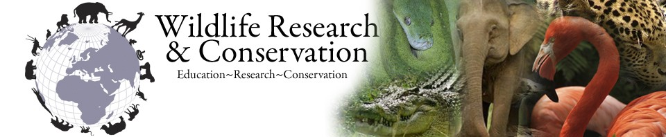 Wildlife Research & Conservation