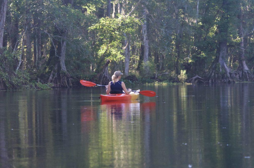 Silver River Kayak Trip